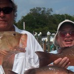snapper and grouper anna maria island