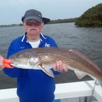 red fish 3