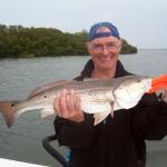 redfish 4