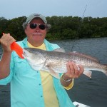 redfish 5