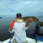 sea trout 3
