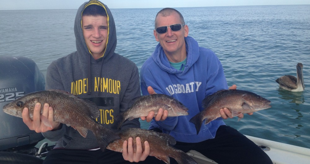 Fishing report april 10 2016 southernaire fishing charters for Anna maria island fishing report